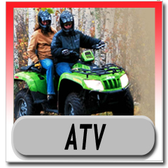 Alpha Sports Parts Diagrams - OEM Arctic Cat ATV Parts Catalog